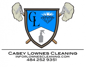 clownes-cleaning-2-1-e1573489908258